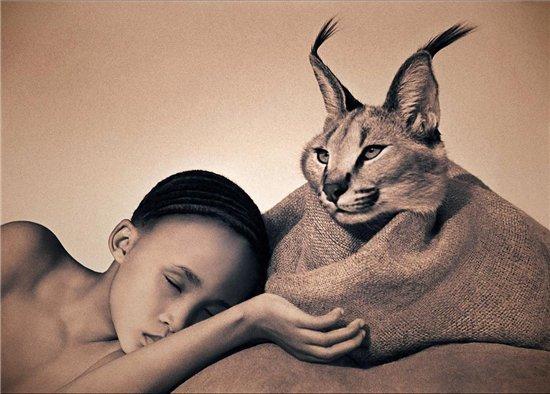 Потрясающие фотографии животных