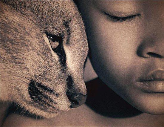 ПОтрясающие фото животных