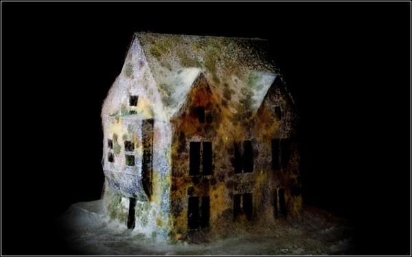 Модели зданий сделаны из бумаги и покрыты слоем муки и плесени