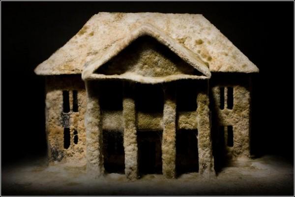 На заброшенные здания нельзя смотреть без сожаления