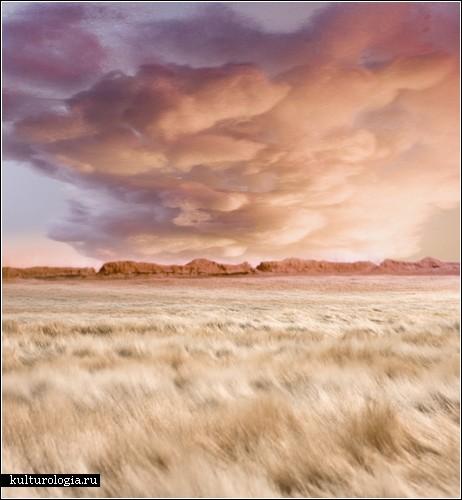 Рукотворные пейзажи от Мэтью Албанезе