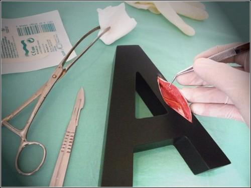 Анатомия букв от Андреаса Шайгера
