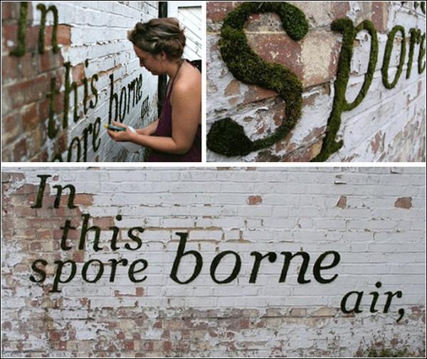 Граффити из мха