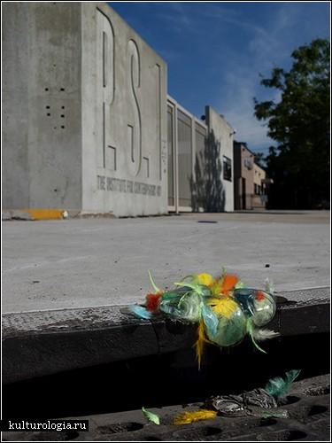 Стеклянно-перьевые инсталляции Бетани Бристоу