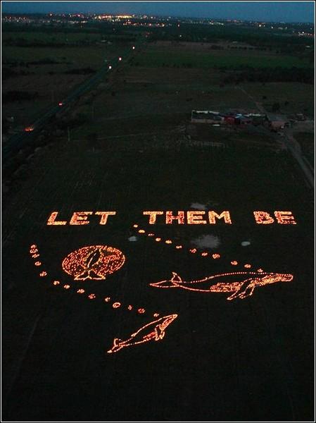Искусство зажигать свечи. Лучшие инсталляции от «Art For Earth»
