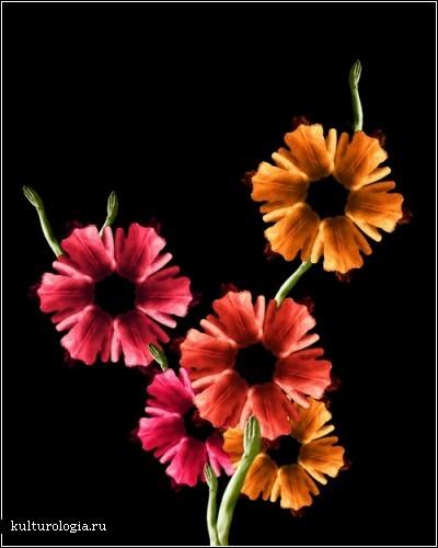 Винкс арты и фото арты Девушки-цветы!