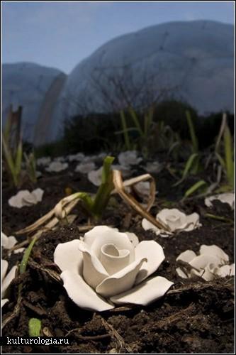 Необычные инсталляции из керамики от Клэр Туоми