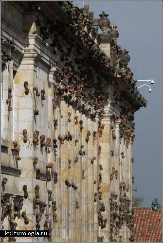 Нашествие муравьев в Колумбии. Арт-проект Рафаэля Гомеза Барроса
