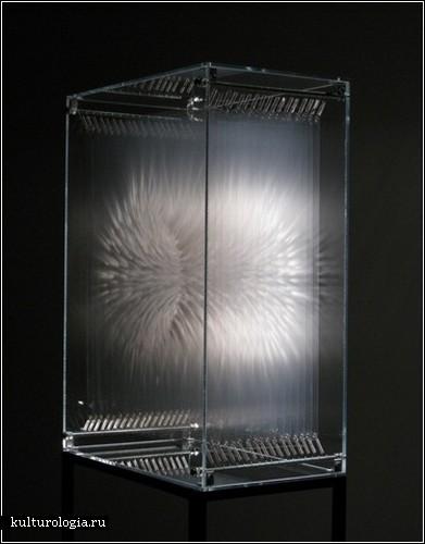 Новый взгляд на время и пространство в творчестве Дэвида Сприггса