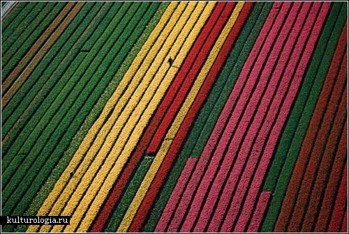 Земля, увиденнная с неба: фотопроект Яна Артюс-Бертрана
