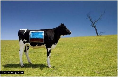 Коровий «боди-арт» от Эммы Хэк