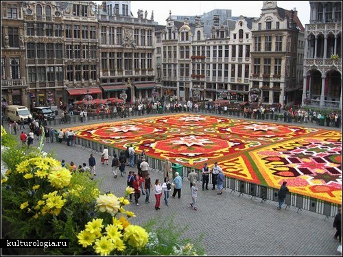 Бельгийские ковры из цветов