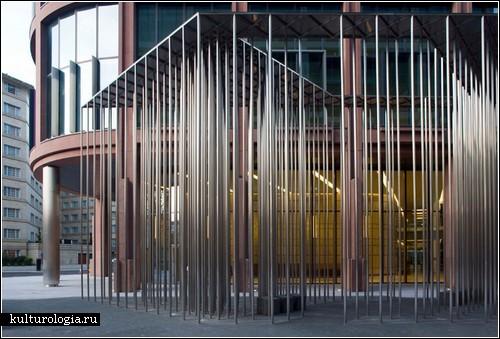Золотой лес посреди Лондона: проект Carmody Groarke