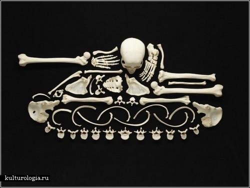 «Остановите насилие» Франсуа Роберта: призыв, сделанный из человеческих костей