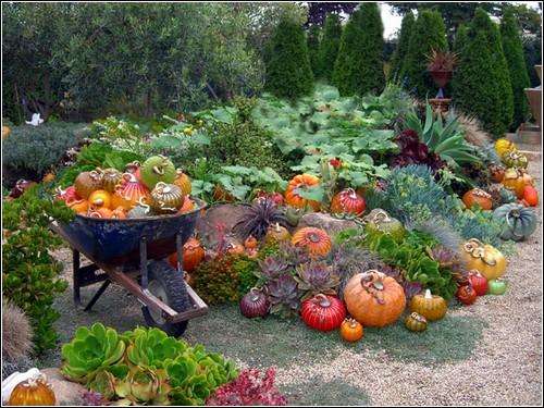 Стеклянный урожай от студии Кон-Стоун