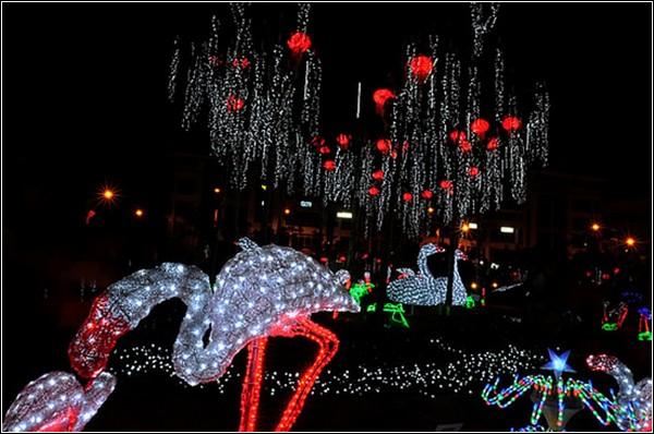 Светящийся парк полюбился жителям и гостям страны