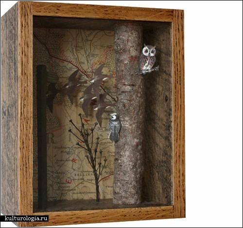 За стеклом: миры в коробках от Джона Дилнота