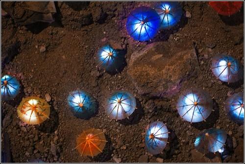 Новые световые инсталляции от Luzinterruptus