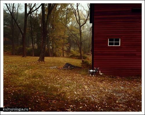 Родные места в фотопроекте Николь Ллойд