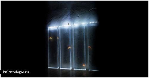 «Quintetto»  - невидимый концерт повседневности