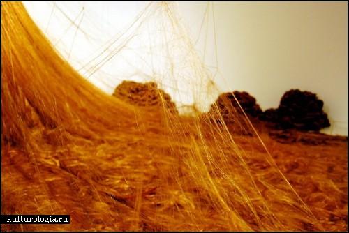 «Рапунцель»: длинноволосая инсталляция Алисы Андерсон