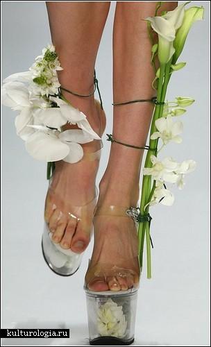 Креативная обувь от Scherer Gonzalez