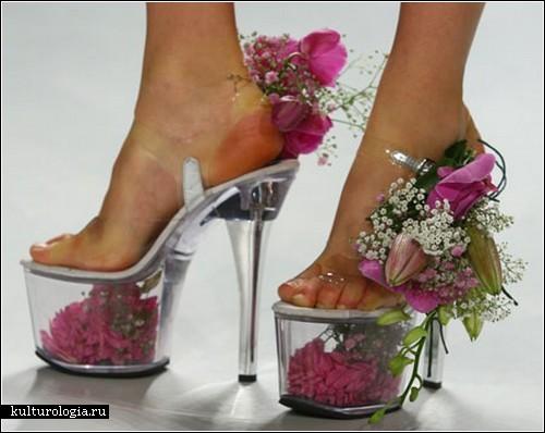 Стильные женские зимние сапоги фото, туфли женские фирмы Баден.