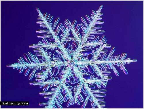 Фотографии снежинок от Кеннета Либбрехта