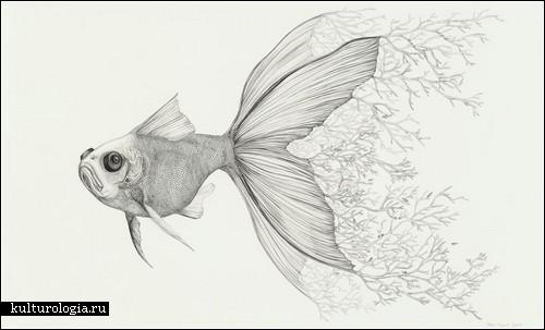 Животные растения рисунки