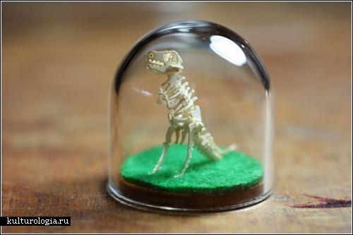 «Tinysaurs»: миниатюрные динозавры от Келли Фаррелл