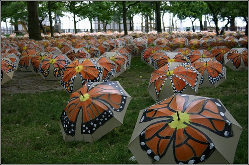 Зонты и бабочки на Манхэттене. Инсталляция Виктора Мэтьюза