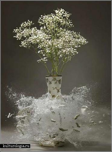 Высокоскоростные фотографии Мартина Климаса (Martin Klimas) и разбитые вазы с цветами