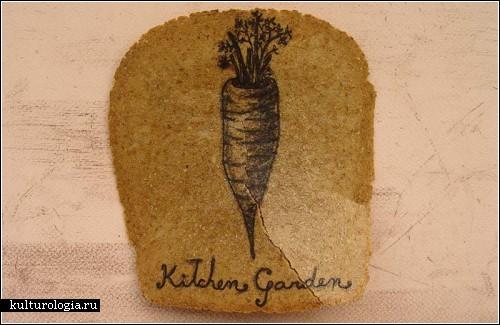 Иллюстрации на тостиках от Ксимены Ескобар (Ximena Escobar)