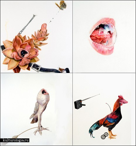 *Летающие рты* и прочие персонажи, нарисованные цветными карандашами Джулии Рэндалл (Julia Randall)