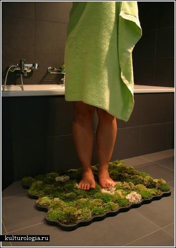 Коврик из мха в вашей ванной