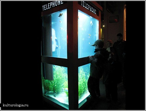 Аквариум в телефонной будке (Лион)