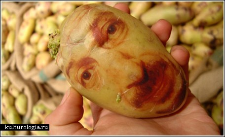 Картофельные портреты