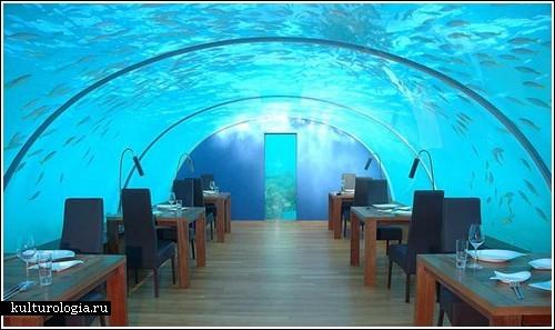 Первый в мире подводный ресторан на Мальдивах