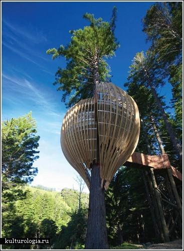 Домик-ресторан на дереве