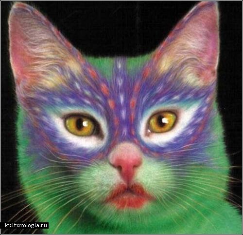 Необычный боди-арт для животных