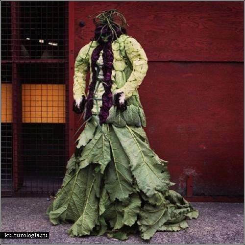 Экологически чистая одежда