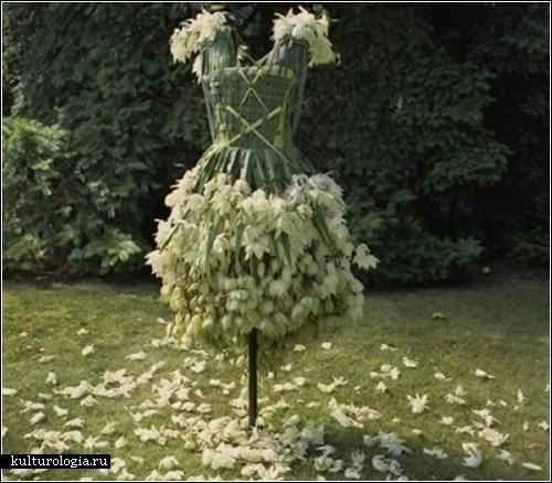 красивые платья в Санкт-Петербурге.
