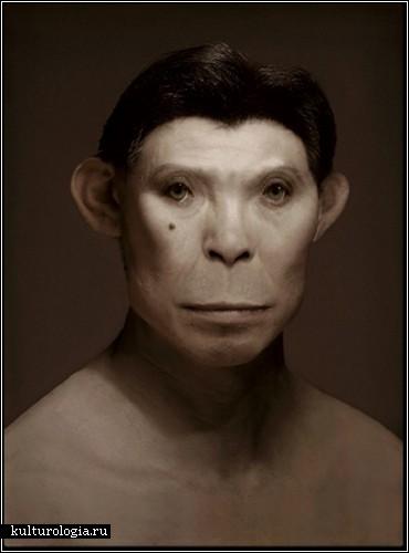 1944 – год обезьяны. Фотопортреты Manimals Дэниела Ли