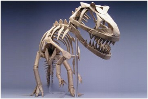 Скелет аллозавра от Robert J. Lang