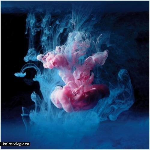 Красочные формы в водной среде. Фотографии Марка Маусона  (Mark Mawson)