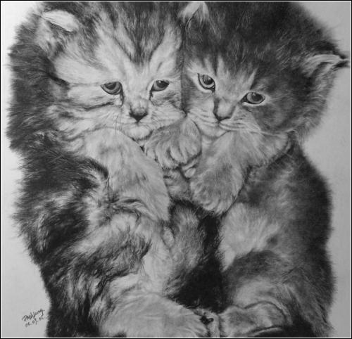 Рисунки простым карандашом от Paul Lung