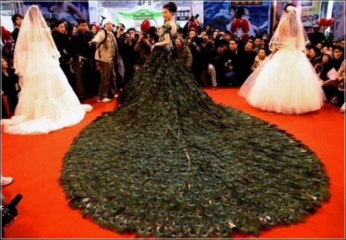 Свадебные платья - article-1169646-0432E190000005DC-641_468x313_popup