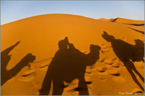 Сахара – королева пустынь