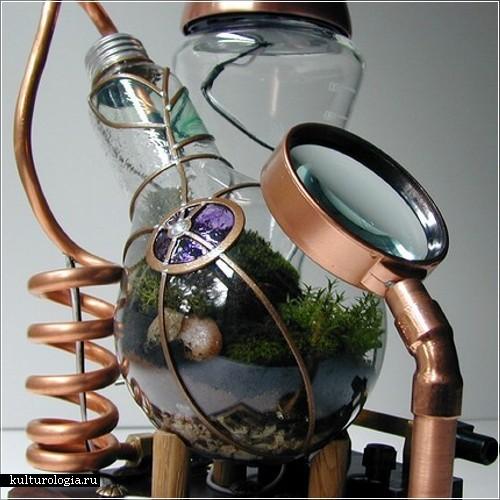 Террариумы в электрических лампочках от дизайнера Тима Уиттевина (Tim Witteveen)