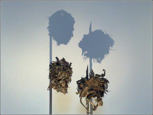 Работа Dark Stuff  (скульпторы Tim Noble и Sue Webster)